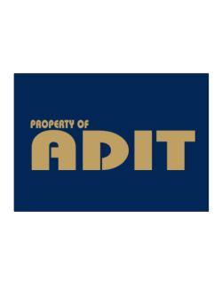 Property Of Adit Sticker