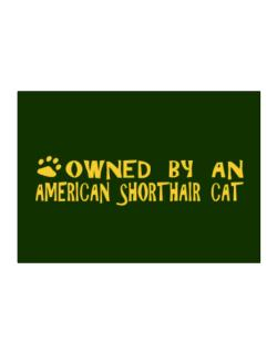 Owned By An American Shorthair Sticker