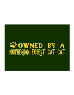 Owned By A Norwegian Forest Cat Sticker