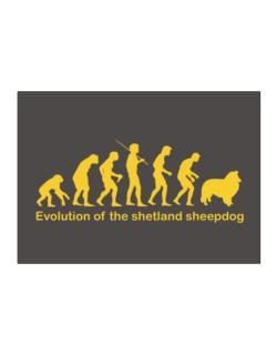Evolution Of The Shetland Sheepdog Sticker