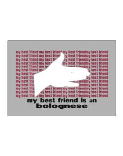 My Best Friend Is A Bolognese Sticker