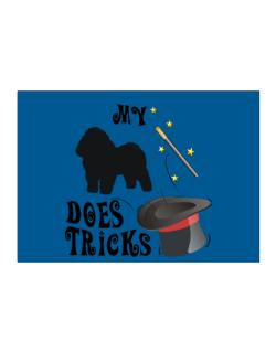 My Bolognese Does Tricks ! Sticker