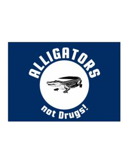 Alligators not drugs! Sticker