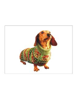 Dachshund christmas sweater Sticker
