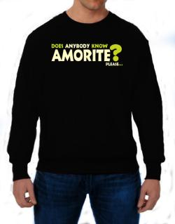 Does Anybody Know Amorite? Please... Sweatshirt