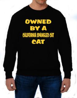Owned By S California Spangled Cat Sweatshirt
