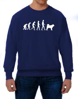 Wetterhoun evolution Sweatshirt