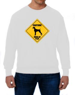 "Sudaderas de "" Dogs at play Weimaraner """