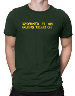 Owned By An American Wirehair Men T-Shirt