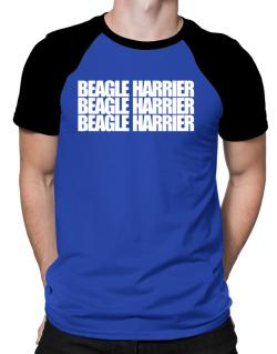 Beagle Harrier three words Raglan T-Shirt