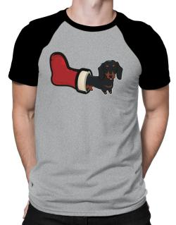 Polo Raglan de Dachshund Stocking Stuffer