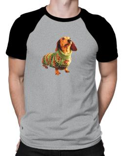 Polo Raglan de Dachshund christmas sweater