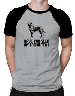 Have you seen my Broholmer? Raglan T-Shirt