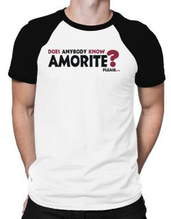 Does Anybody Know Amorite? Please... Raglan T-Shirt