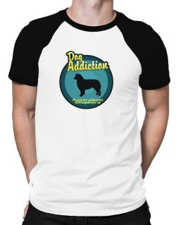 Dog Addiction : Australian Shepherd Raglan T-Shirt