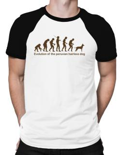 Evolution Of The Peruvian Hairless Dog Raglan T-Shirt