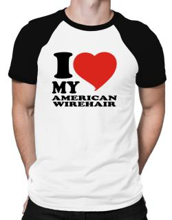 I Love My American Wirehair Raglan T-Shirt