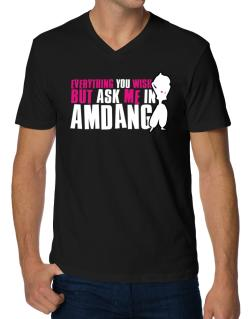 Anything You Want, But Ask Me In Amdang V-Neck T-Shirt