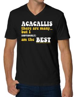 Acacallis There Are Many... But I (obviously) Am The Best V-Neck T-Shirt