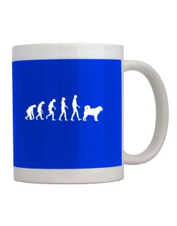 Wetterhoun evolution Mug