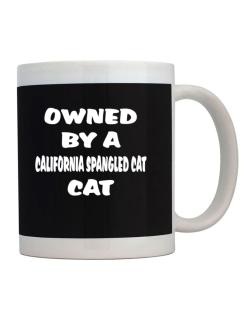 Owned By S California Spangled Cat Mug