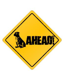 """  Cane Corso - AHEAD !  "" Crossing Sign"