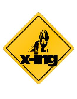 Beagle X-ing Crossing Sign