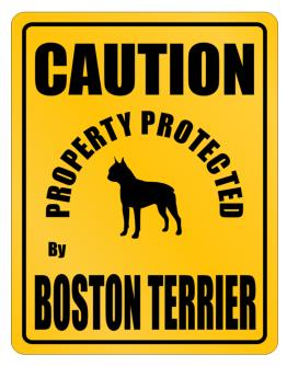 New Protected By Boston Terrier Parking Sign Parking Sign