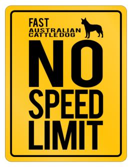 """"""" FAST Australian Cattle Dog - NO SPEED LIMIT NONE """" Parking Sign"""