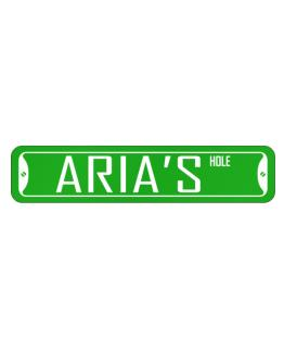 """ Aria hole "" Street Sign"