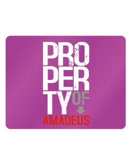 Property of Amadeus Parking Sign - Horizontal