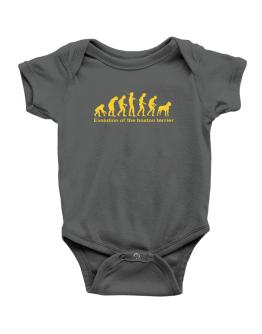 Evolution Of The Boston Terrier Baby Bodysuit