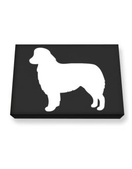 Australian Shepherd Silhouette Embroidery Canvas square