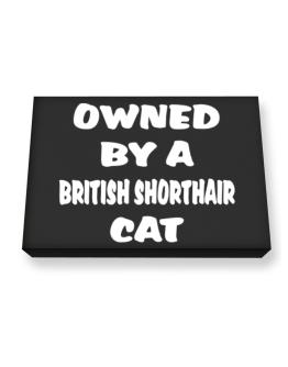 Owned By S British Shorthair Canvas square
