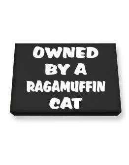 Owned By S Ragamuffin Canvas square
