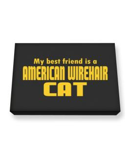My Best Friend Is An American Wirehair Canvas square