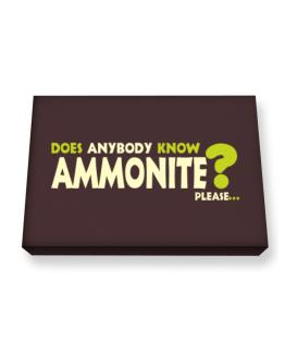 Does Anybody Know Ammonite? Please... Canvas square