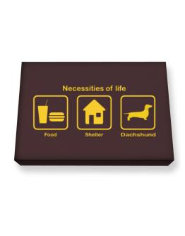 Necessities Of Life Canvas square