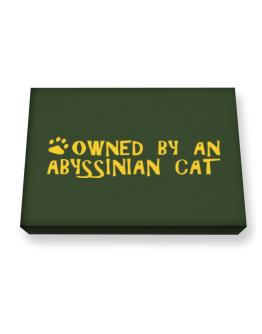 Owned By An Abyssinian Canvas square