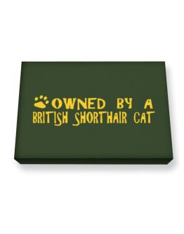 Owned By A British Shorthair Canvas square