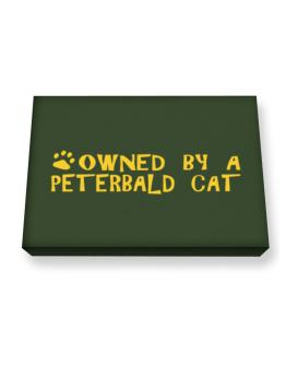 Owned By A Peterbald Canvas square