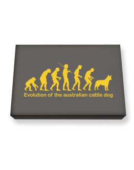 Evolution Of The Australian Cattle Dog Canvas square