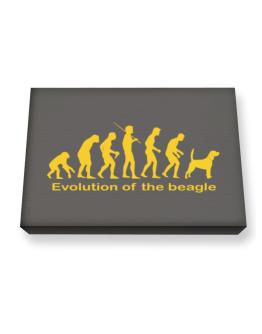 Evolution Of The Beagle Canvas square