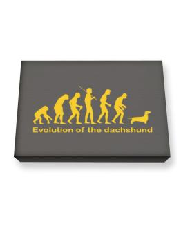 Evolution Of The Dachshund Canvas square