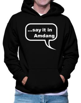Say It In Amdang Hoodie