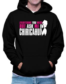 Anything You Want, But Ask Me In Chiricahua Hoodie