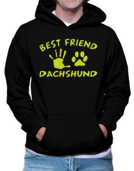 My Best Friend Is My Dachshund Hoodie