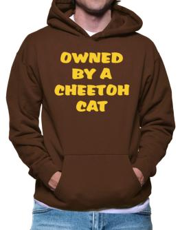 Owned By S Cheetoh Hoodie