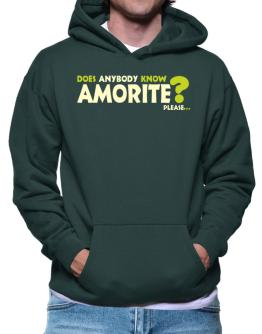 Does Anybody Know Amorite? Please... Hoodie