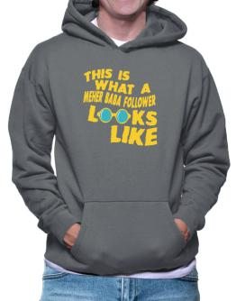 This Is What A Meher Baba Follower Looks Like Hoodie